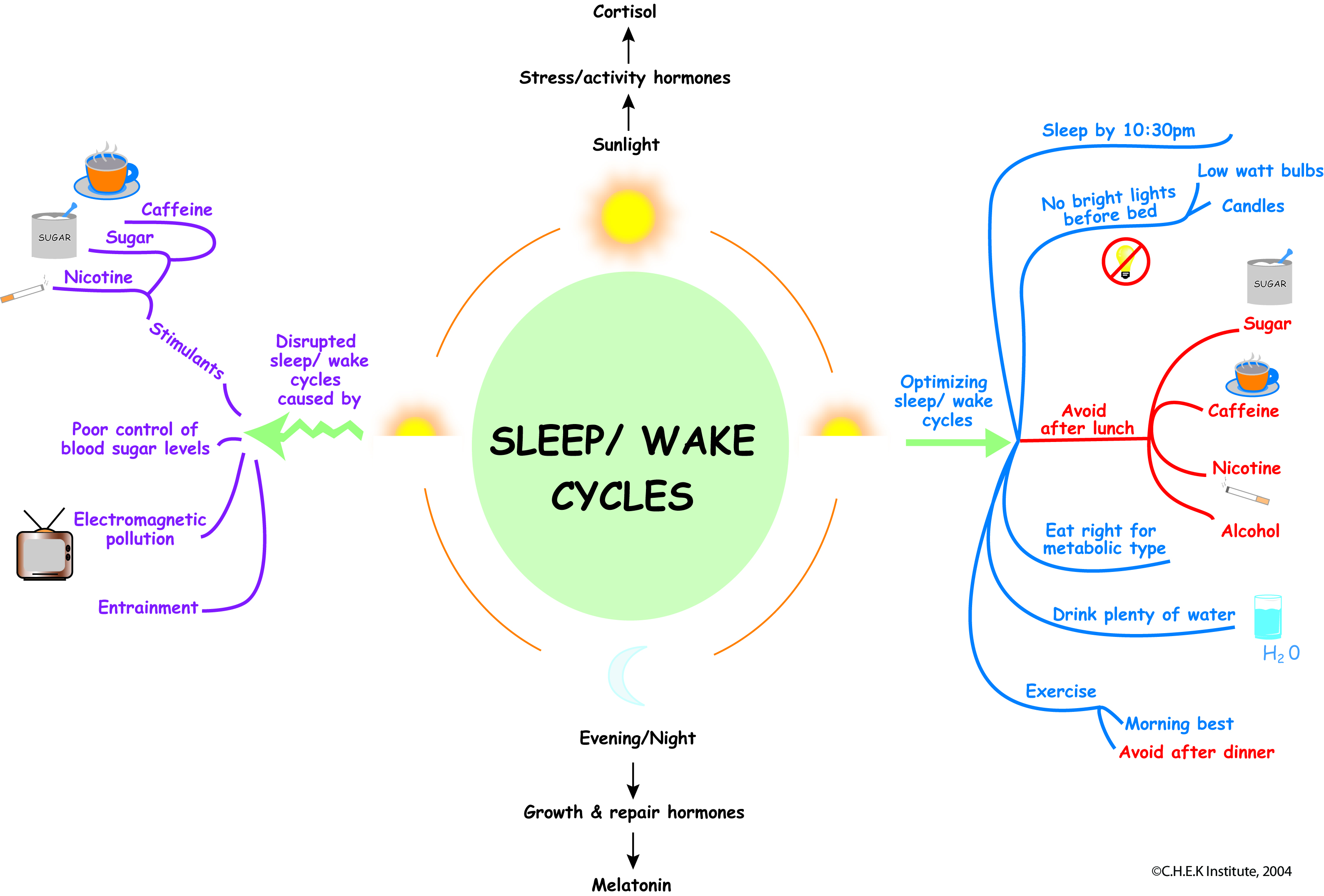 sleep wake cycles