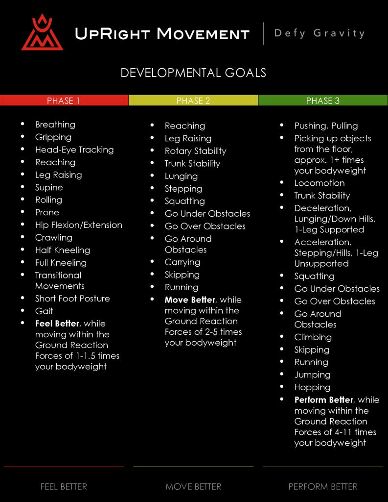 DEVELOPMENTAL GOALS