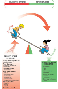 Balancing Stress Training