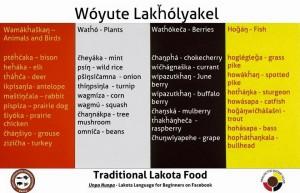 Lakota Traditional Foods