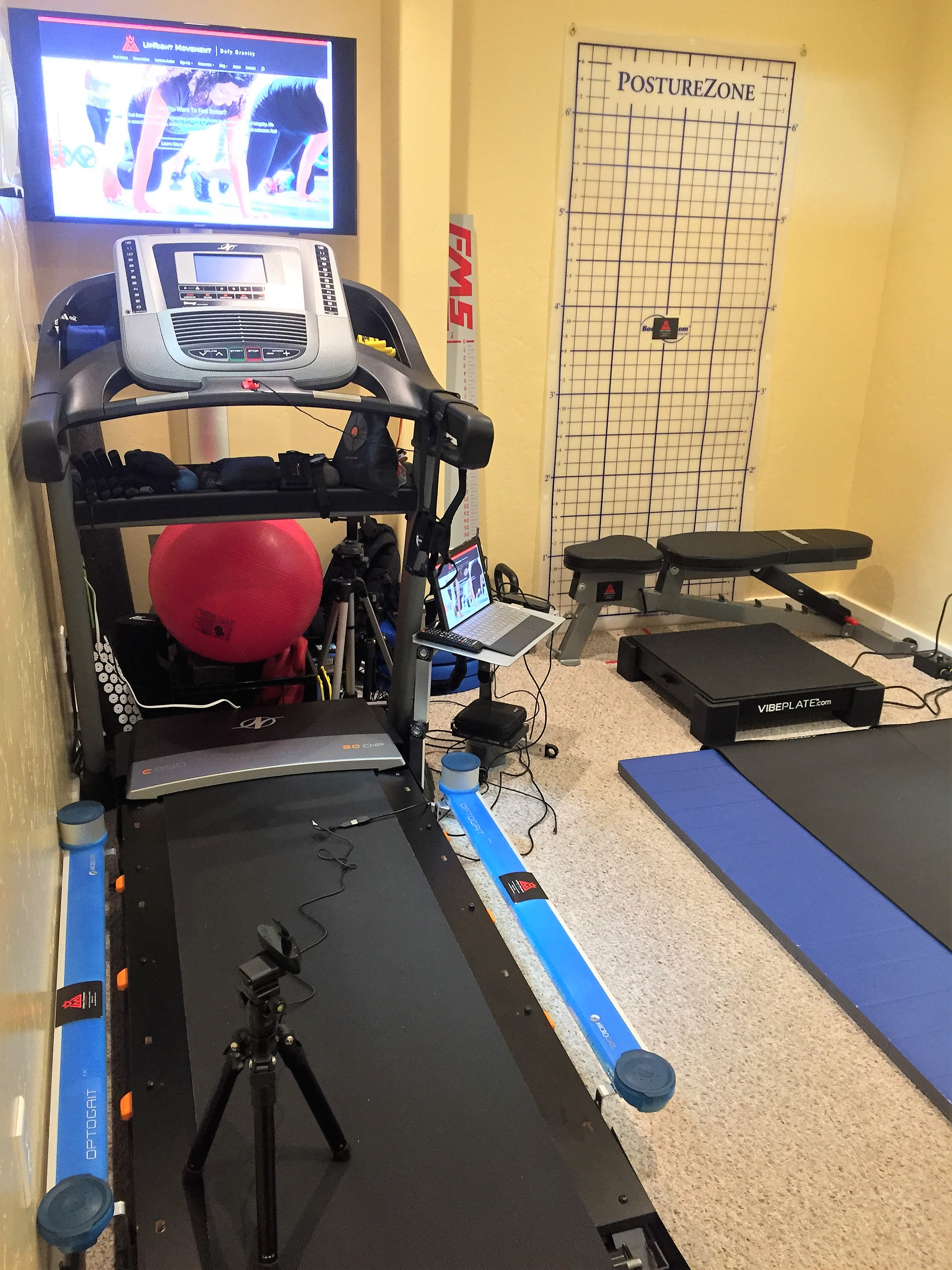 Movement Signature Room: Feel Better Move Better Perform Better